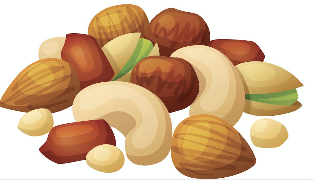 Картинки с орешками нарисованные