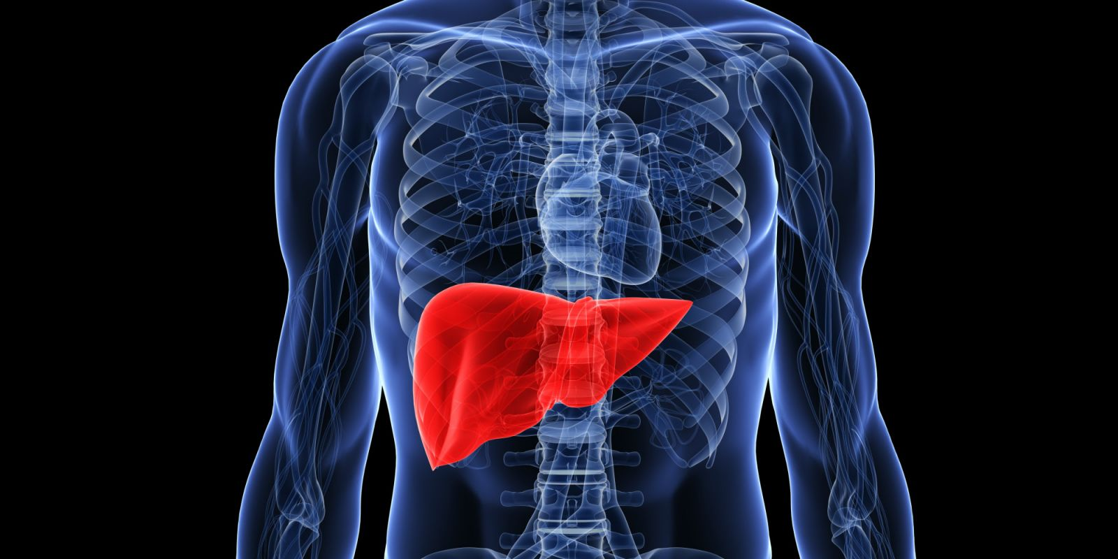 Is A New Liver Targeted Insulin More Effective Diatribe