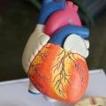 diabetes heart health Invokana